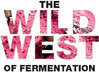 The wild west of fermentation