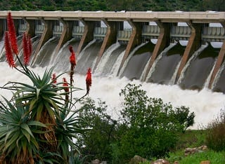 Clanwilliam Dam brings hope to wine producers