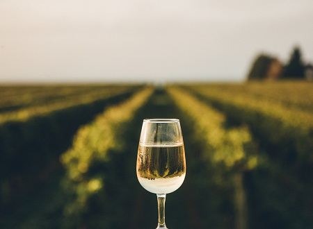 Implications of Level 3 regulations for wine businesses
